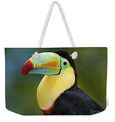 The Rainbow Bird.. Weekender Tote Bag by Nina Stavlund