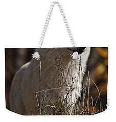 Weekender Tote Bag featuring the photograph The Sentinel by Wolves Only