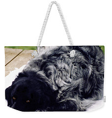 The Shaggy Dog Named Shaddy Weekender Tote Bag by Marian Cates
