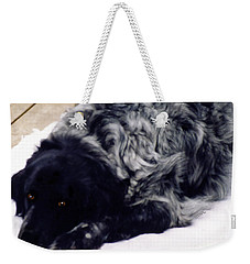 The Shaggy Dog Named Shaddy Weekender Tote Bag