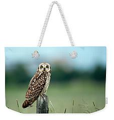 The Short-eared Owl  Weekender Tote Bag
