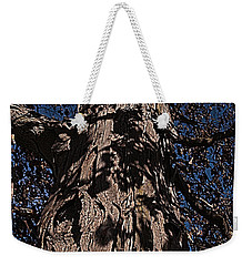Weekender Tote Bag featuring the photograph The Tree Of Life by Deborah Klubertanz