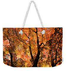 The Trees Dance As The Sun Smiles Weekender Tote Bag by Don Schwartz