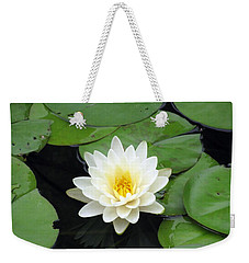 Weekender Tote Bag featuring the photograph The Water Lilies Collection - 01 by Pamela Critchlow