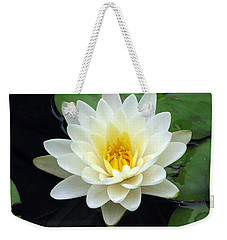 Weekender Tote Bag featuring the photograph The Water Lilies Collection - 02 by Pamela Critchlow