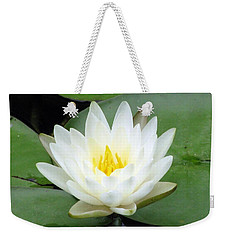 Weekender Tote Bag featuring the photograph The Water Lilies Collection - 04 by Pamela Critchlow