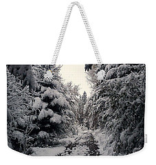 Weekender Tote Bag featuring the photograph The Way In Snow by Felicia Tica