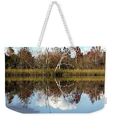 Weekender Tote Bag featuring the photograph The Winter Tree by Debra Forand