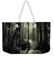 The Woods Weekender Tote Bag by Katie Wing Vigil