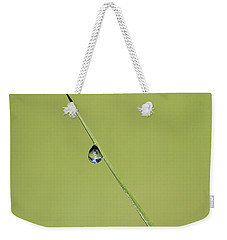Weekender Tote Bag featuring the photograph The World Within A Dewdrop by Penny Meyers