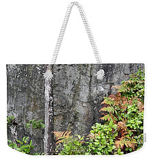 Weekender Tote Bag featuring the photograph Thetis In Fall by Cheryl Hoyle