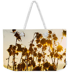 Weekender Tote Bag featuring the photograph Thistles In The Sunset by Chevy Fleet