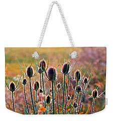 Thistles With Sunset Light Weekender Tote Bag