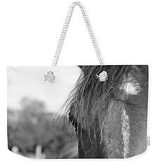 Thoroughbred B/w Weekender Tote Bag by Jennifer Ancker