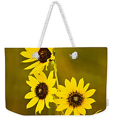 Weekender Tote Bag featuring the photograph A Trio Of Black Eyed Susans by Gary Slawsky