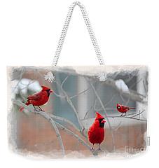Three Cardinals In A Tree Weekender Tote Bag