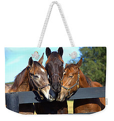 Three Friends Weekender Tote Bag by Gordon Elwell