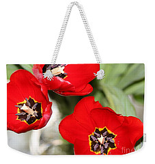 Three In Red  Weekender Tote Bag by Cathy Dee Janes
