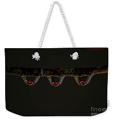 Weekender Tote Bag featuring the photograph Three Of Hearts by Patrick Shupert