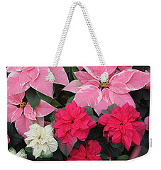 Weekender Tote Bag featuring the photograph Three Pink Poinsettias by The Art of Alice Terrill