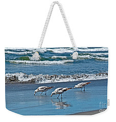 Weekender Tote Bag featuring the photograph Three Seagulls At Ocean Shore Art Prints by Valerie Garner
