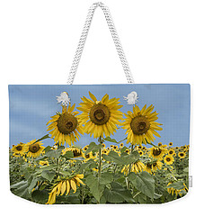 Three Sunflowers At The Front Of A Sunflower Field Weekender Tote Bag