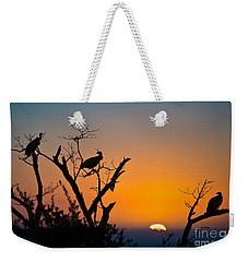 Three Vultures Waiting Weekender Tote Bag
