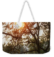 Through The Trees Weekender Tote Bag by Melanie Lankford Photography