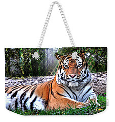 Weekender Tote Bag featuring the photograph Tiger 2 by Marty Koch