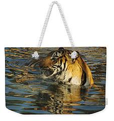 Tiger 3 Weekender Tote Bag