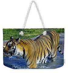 Tiger 4 Weekender Tote Bag