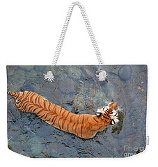 Weekender Tote Bag featuring the photograph Tiger In The Stream by Robert Meanor