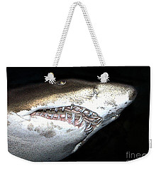 Weekender Tote Bag featuring the photograph Tiger Shark by Sergey Lukashin
