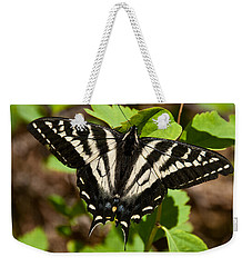 Weekender Tote Bag featuring the photograph Tiger Swallowtail Butterfly by Jeff Goulden