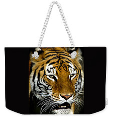 Tiger Tiger Burning Bright Weekender Tote Bag by Venetia Featherstone-Witty