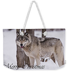 Timber Wolf Christmas Card English 3 Weekender Tote Bag by Wolves Only