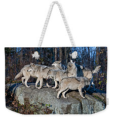 Timber Wolf Pack Weekender Tote Bag by Wolves Only