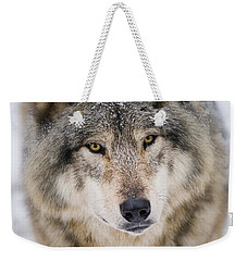 Timber Wolf Pictures 254 Weekender Tote Bag
