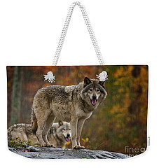 Timber Wolf Pictures 410 Weekender Tote Bag