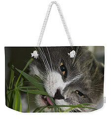 Weekender Tote Bag featuring the photograph Time To Dine by Vicki Ferrari