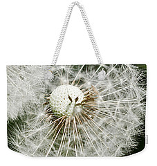 Weekender Tote Bag featuring the photograph Time To Fly by Liz  Alderdice
