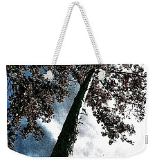 Tippy Top Tree II Art Weekender Tote Bag