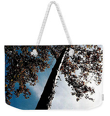 Weekender Tote Bag featuring the photograph Tippy Top Tree Photo by Lesa Fine