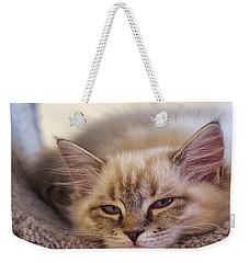 Tired Kitten Weekender Tote Bag