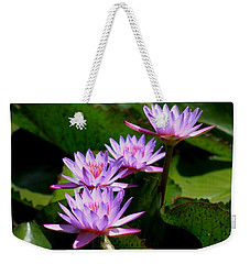 Together We Bloom - Violet Lily Weekender Tote Bag