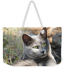 Tom Cat Weekender Tote Bag
