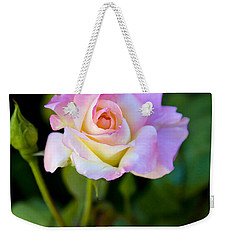 Weekender Tote Bag featuring the photograph Rose-touch Me Softly by David Millenheft