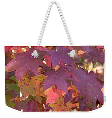Weekender Tote Bag featuring the photograph Traces Of Fall by Andrea Anderegg