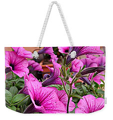Weekender Tote Bag featuring the photograph Trailing Petunias by Clare Bevan