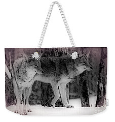 Weekender Tote Bag featuring the photograph Tranquility by Bianca Nadeau